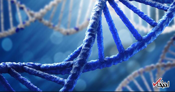 ذخیره سازی اطلاعات در DNA پروژه ای منطقی یا خطرناک؟ ، نگرانی مدیرعامل سامسونگ از آینده هوش مصنوعی در دنیا