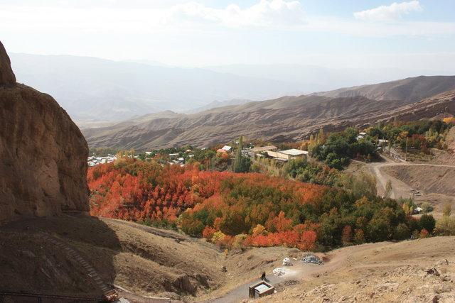 به تاراج رفتن بخشی از جنگل های مناطق الموت قزوین