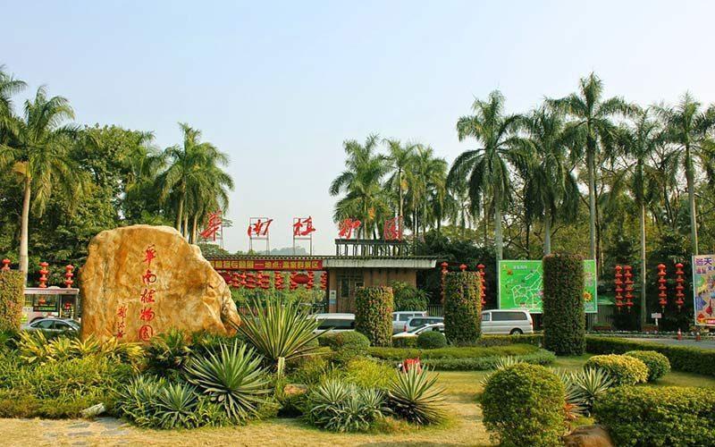 عجیب ترین گیاهان جهان را در باغ گیاه شناسی چین ببینید!