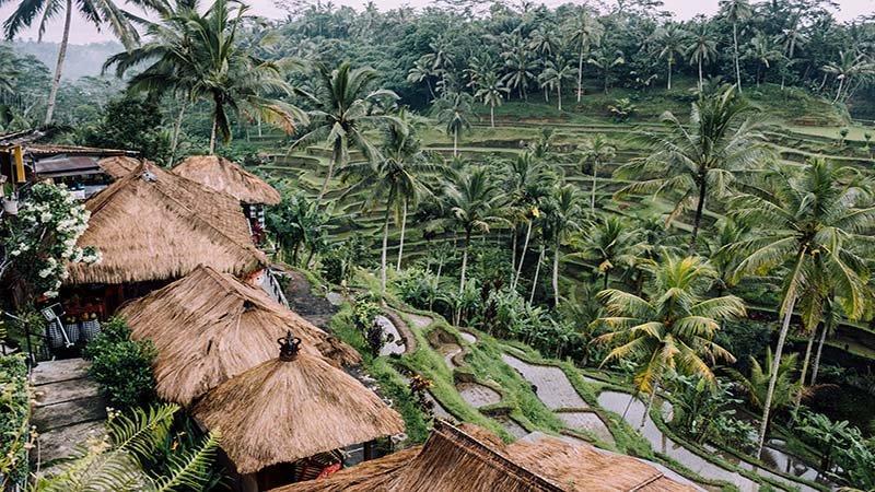 به بالی بروید تا تجربه ای عالی داشته باشید!