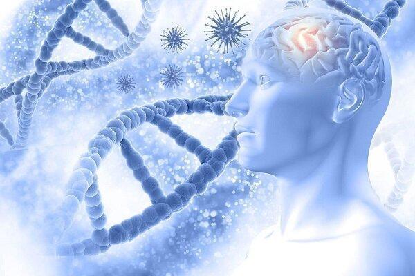 شناسایی دقیق خطر ابتلا به آلزایمر با آزمایش خون